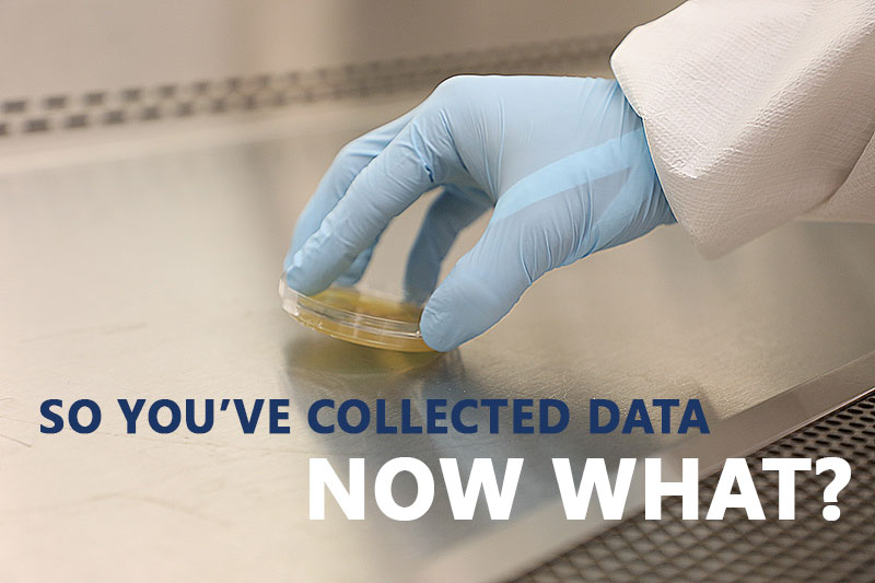 """A gloved hand using a contact plate to sample a surface in a compounding hood. Caption says """"So you've collected data. Now what?"""""""